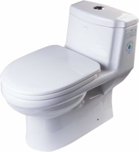 EAGO dual flush toilet