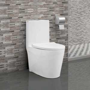 Swiss Madison one piece toilet