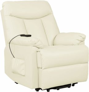 Domesis Renu Leather Power Lift Chair Recliner